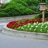田中駅前ロータリー
